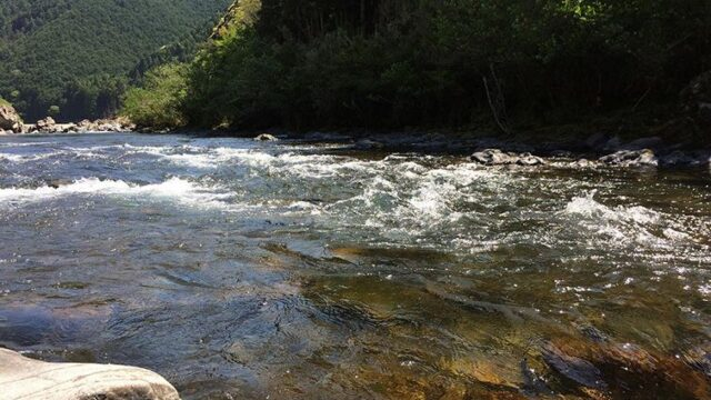 鮎釣りの川の画像