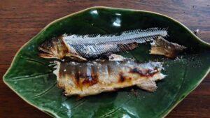 鮎の塩焼きの美味しい食べ方の説明4