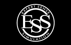 エキスパートセンスシミュレーション
